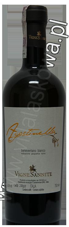 Agostinella